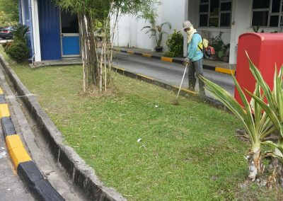 LANDSCAPING SERVICES 09